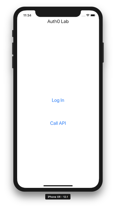 iOS application Call API button