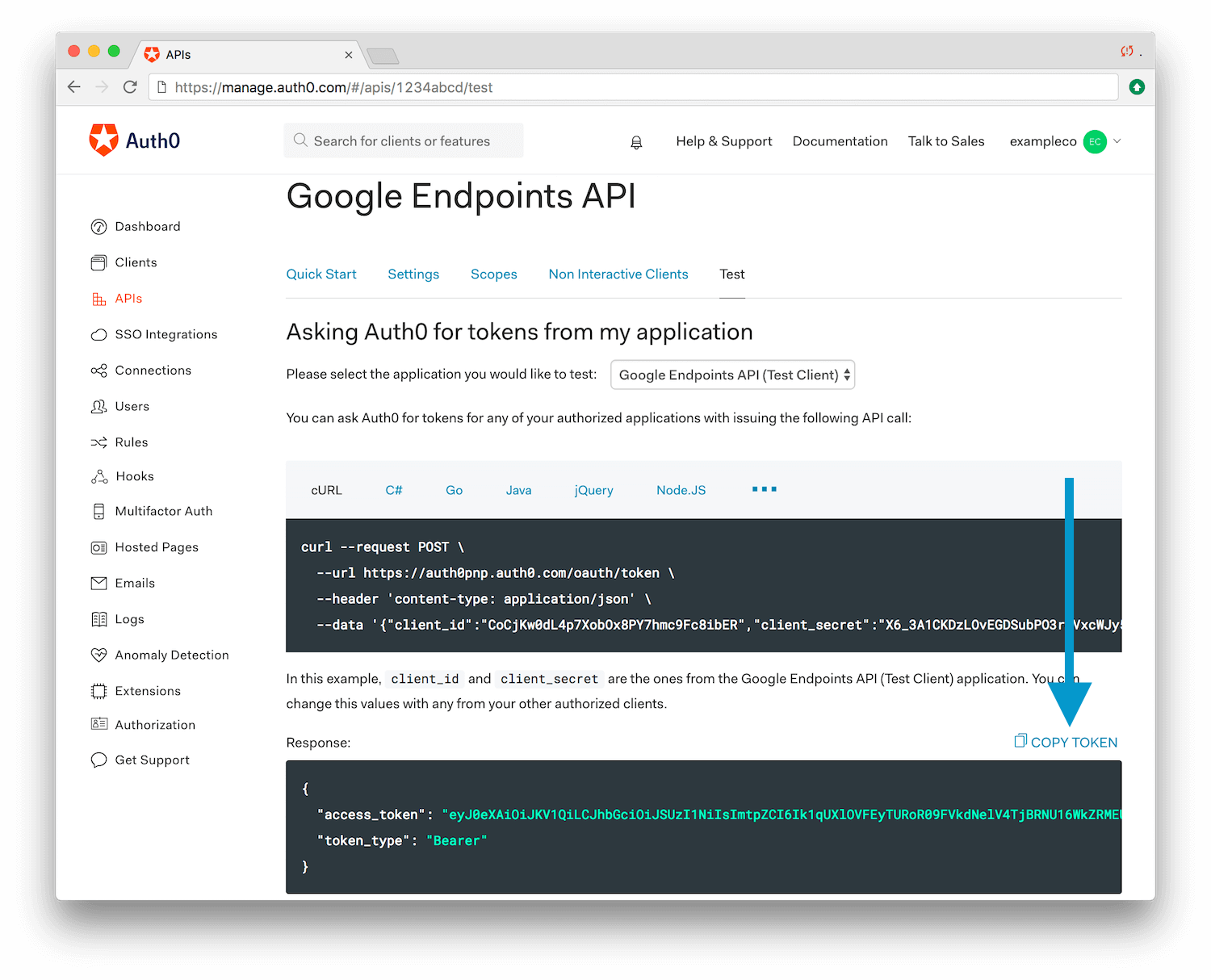 Securing Google Cloud Endpoints with Auth0